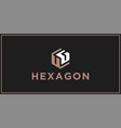 ug hexagon logo design inspiration vector image vector image