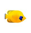 yellow marine fish sea animal isolated vector image