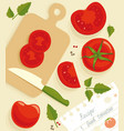 composition from the fresh whole and cut tomatoes vector image