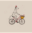 cute dalmatian dog riding bicycle vector image