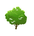 green tree nature vector image
