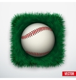 Icon Baseball ball in green grass vector image vector image