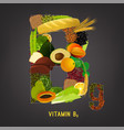 vitamin b9 in food vector image vector image