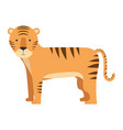 wild tiger isolated icon vector image