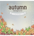 image autumn background with leaves chestnuts vector image vector image