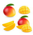 mango realistic fruit whole and pieces vector image vector image