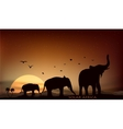 sunrise and sunset over the savannah vector image