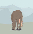 horse standing in nature vector image vector image