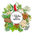 hot round design with spices and herbs vector image