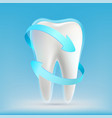 icon white human tooth with blue arrows vector image vector image