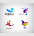 set birds logos phoenix icons isolated vector image vector image