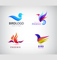 set of birds logos phoenix icons isolated vector image