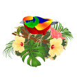 tropical bird on a branch bouquet with tropical vector image vector image