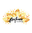 watercolor painted autumn leaves banner fall vector image vector image