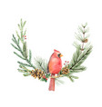 watercolor christmas wreath with bird vector image