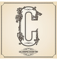 Calligraphic font Letter C vector image vector image