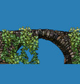 cartoon stone bridge overgrown with climbing