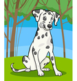 dalmatian purebred dog cartoon vector image vector image
