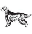 decorative portrait of dog gordon setter vector image vector image