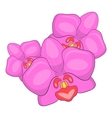 Orchid icon cartoon style vector image