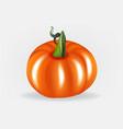 pumpkin logo design vector image vector image
