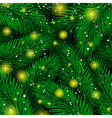 Background of Christmas tree branches Magic Luxury vector image vector image