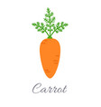 carrot icon with title vector image