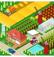 Isometric Rural Farm Agricultural Field vector image vector image