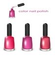 Set of nail polish vector image vector image