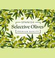 spanish premium quality olives farm market vector image vector image