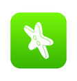 star clothes button icon green vector image vector image