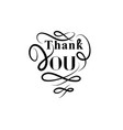 thank you card handwritten lettering calligraphic vector image
