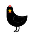 black chicken isolated unique farm bird on white vector image