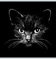 Cat head animal for t-shirt vector image vector image