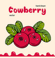 cowberry berries images vector image vector image