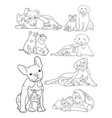 Dog and cat line art
