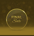 final sale label vector image