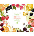 fruit mix banner vector image vector image