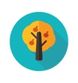 Fruit tree flat icon with long shadow vector image