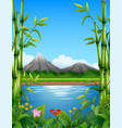 landscape with bamboo trees in the lake and mounta vector image