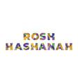 rosh hashanah concept retro colorful word art vector image