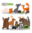 cute forest animals collection isolated vector image