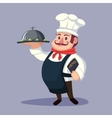 Funny cute fat cartoon Chief cook character with vector image vector image