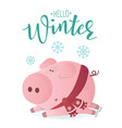hello winter banner cute pig in winter scarf vector image vector image