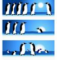 penguins winter in arctic vector image