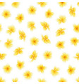 seamless pattern with flower plumeria or vector image