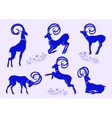 Set of blue mountain goats vector image vector image