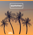 summer sunset with palm trees vector image vector image