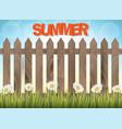 summer time background banner or flyer design vector image