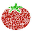 tomato vegetable collage of triangles vector image